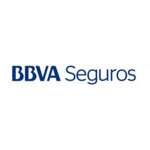 BBVA SEGUROS DE VIDA